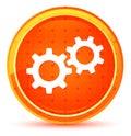 Settings process icon natural orange round button Royalty Free Stock Photo