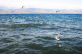 Sevan lake Royalty Free Stock Image