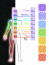 The seven main chakras illustration of Royalty Free Stock Images