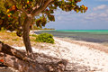 Seven mile beach grand cayman cayman islands Stock Image