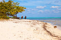 Seven mile beach grand cayman cayman islands Royalty Free Stock Photography