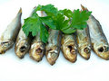 Seven sprat Royalty Free Stock Images