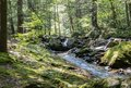Seven Tubs Waterfall Rocky Forest Stream Royalty Free Stock Photo