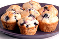 Several blueberry muffins on purple plate Royalty Free Stock Image