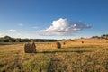 Several Round Haystacks, Lit B...