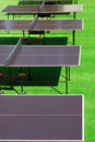 Several tennis tables on the green grass Royalty Free Stock Images