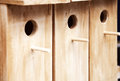 Several wooden birdhouses in a row background. A few wood bird houses for sale