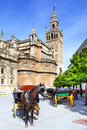 Seville carriages near cathedra in Stock Image