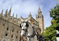 Seville cathedral horsedrawn carriage waiting for tourists in front of the spain this is an unesco world heritage site Royalty Free Stock Photos