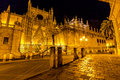 Seville Cathedral night Royalty Free Stock Photo