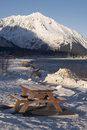 Seward city coast in Winter Royalty Free Stock Images