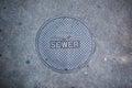 Sewer sidewalk cover