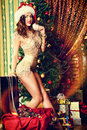 Sexual costume attractive young woman in lingerie posing in christmas decorations Royalty Free Stock Photography
