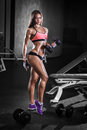 Sexy athlete girl with a dumbbell in the gym fitness dumbbells Stock Images