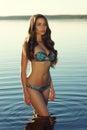 Sexy bikini girl Royalty Free Stock Photo