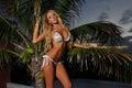 bikini model posing pretty outside Royalty Free Stock Photo