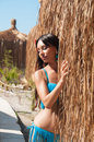 Sexy brown haired girl in a bikini near thatched bungalow travel Stock Photo