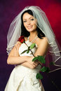 Sexy brunette bride Stock Image