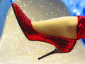 Sexy red shoe Royalty Free Stock Photos