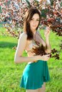 Sexy slim brunette wearing frank dress poising in blooming trees Stock Images