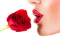 Sexy woman smelling flower sensual red lips on white background Royalty Free Stock Photo