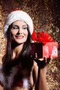 Sexy young santa girl with gift Royalty Free Stock Photo