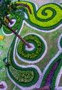 Sguardo verde del cespuglio da su Fotografia Stock Libera da Diritti