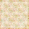 Shabby Chic vintage flowers floral grungy background Royalty Free Stock Photo