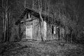 Shack old abandoned wooden in finland Royalty Free Stock Image