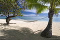 Shaded hammock on tropical sandy beach aitutaki under trees by lagoon Royalty Free Stock Photo