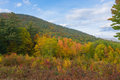Shades of color in the higher elevations autumn full swing adirondacks back october Royalty Free Stock Images