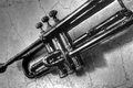 The shadow of the jazz trumpet Royalty Free Stock Photo