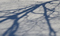 Shadow on snow from a tree Royalty Free Stock Photo