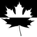 Shadowed Maple Leaf Silhouette Royalty Free Stock Images