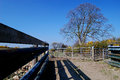 Shadows an animal pen in countryside with deep of the timber fencing cast by bright sunlight Stock Photo