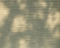 Shadows from branches outside cellular window shade energy efficient allows tree to create pattern Royalty Free Stock Images