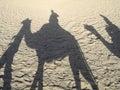 Shadows of caravan Royalty Free Stock Photo