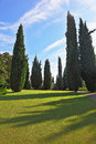 The shadows of the cypresses slender fall Stock Photo