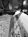 Shadows and footprints in the snow black white photo of taken at night during a january storm washington dc Royalty Free Stock Images