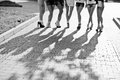Shadows of legs of seven sexy girls on short shorts. Bachelorett Royalty Free Stock Photo