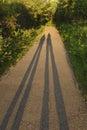 Shadows at Sunset Royalty Free Stock Photo