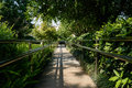 Shady fenced path in sunny summer afternoon chengdu china Royalty Free Stock Images
