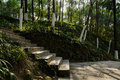 Shady mountainside steps in sunny winter afternoon chengdu china Stock Photos