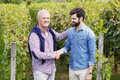 Shaking hands portrait of young and old winemaker standing at vineyard and senior professional men and smiling businessman working Royalty Free Stock Photos