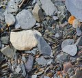 Shale rocks exposed in a dry stream bed Royalty Free Stock Image