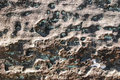 Shale texture of the stone strip surface texture at phataem national park Royalty Free Stock Images
