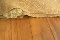 Shallow DOF of rock inside old sack