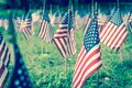 Shallow DOF selective focus many lawn American flags display on green grass on Memorial Day Royalty Free Stock Photo