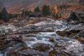 Shallow Rocky Stream Long Exposure View With Pine Trees, Altai Mountains Highland Nature Autumn Landscape Photo Royalty Free Stock Photo