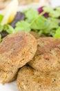 Shami Kebab Royalty Free Stock Photo